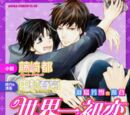 The Case of Yoshiyuki Hatori (light novel)