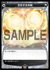 SP07-020