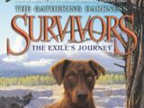 The Exile's Journey