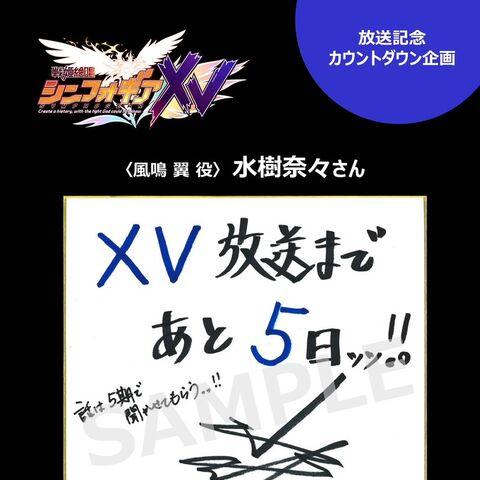 Nana's XV Countdown and Signature