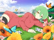 Hikage - New Link 04