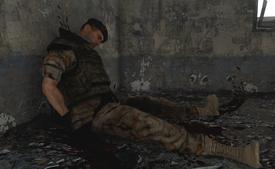 Dead EDF soldier