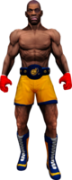 Boxer Barry SSHD