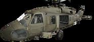 Black Hawk close-up
