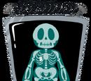 X-Ray Fern