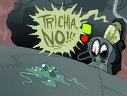 Climax-trichia3