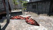 Убитая гарпия
