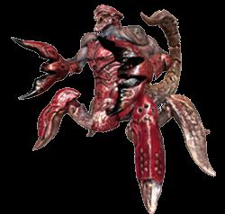 Redarachnoid 3