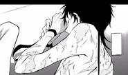 Tsurugi scars