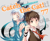 Catch the cat banner