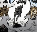 Meute du Chien(s) et chienne(s)