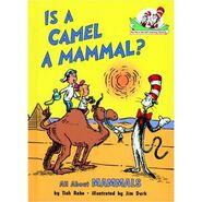 Camelmammal