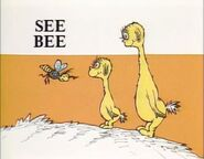 We see a bee