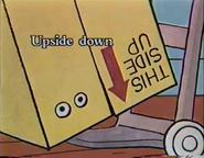 Inside Outside Upside Down (17)