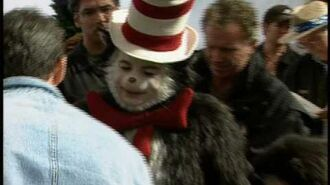 Mike Myers as The Cat in the Hat