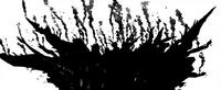 Forêt du Roi des Fées entrain de brûler