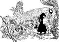 Forêt du Roi des Fées rétablie