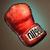 Furinkasan Gloves