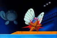 200px-Ash Butterfree Tackle