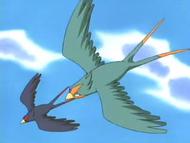 Ash's Swellow VS Winnona's Swellow
