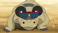 Sunglasses Sandile