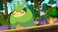 Ash and Swadloon