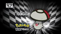 Who's That Pokemon USA BW035