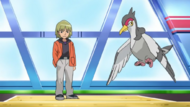 Trip and Tranquill