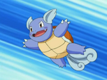 May's Wartortle