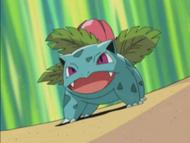 Crystal's Ivysaur