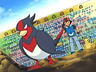 Ash and Swellow