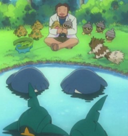 Birch's Pokemon
