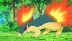 Ash's Quilava