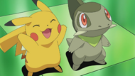 Pikachu and Axew