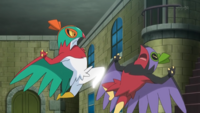 Hawlucha-high-jump-kick