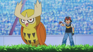 Ash and Noctowl