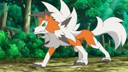 Ash's Lycanroc