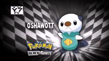 Who's That Pokemon USA BW002