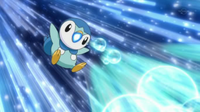Dawn Piplup BubbleBeam