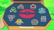Barry's Sinnoh Badges
