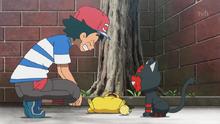 Litten and Ash