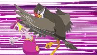 200px-Ash Staraptor Close Combat