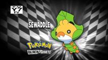 Who's That Pokemon USA BW018