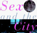 Sex and the City (novel)