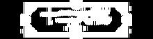 Juuni Taisen Wiki-wordmark