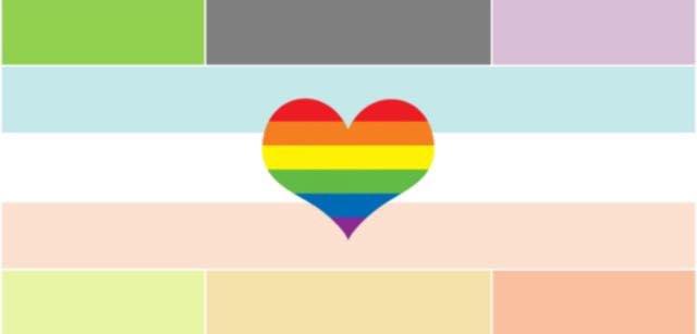 File:Novosexual pride flag.jpg