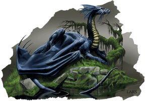 Black Dragon DL