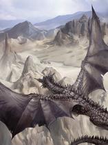 Gray Dragon 4e