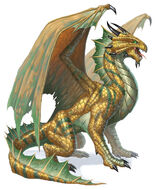 Bronze Dragon 5e