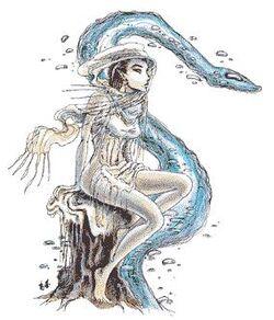 WaterKin
